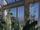 Jak stworzyć ogród zimowy wokół domu